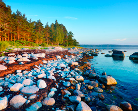 Wild beach in Parnu, Estonia