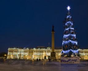 Christmas Tree And Winter Palace