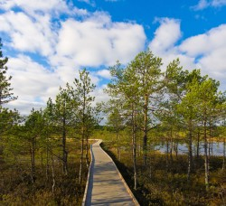 Lahemaa National Park – place to visit | Baltic Tours