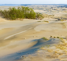 High Dunes of Nida, Lithuania