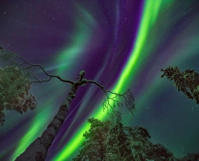 Northern Lights in Saariselka