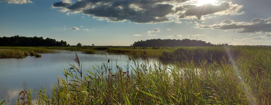 latvia-nature-