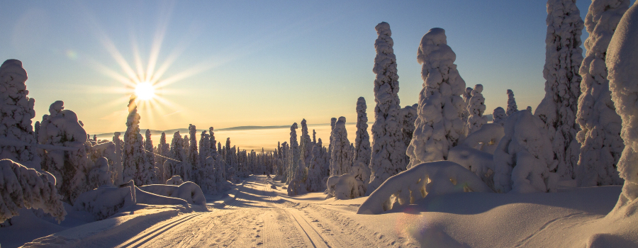adventure-cold-cross-country-skiing-416728-2