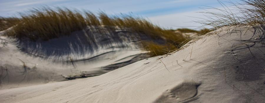 dunes-4100220_1920-2